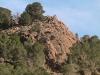 oujda-montagne-sidi-maafa-nature